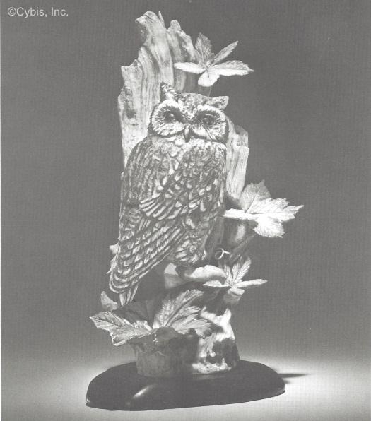 AMERICAN SCREECH OWL WITH VIRGINIA CREEPER by Cybis