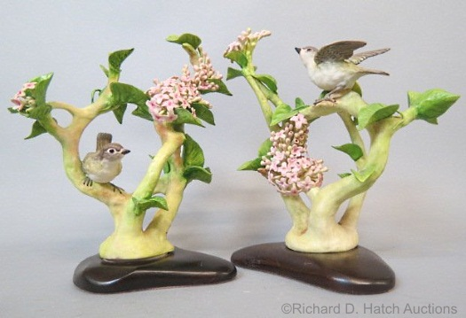 Blue Headed Vireo pair on pink lilac by Cybis