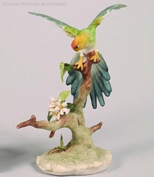 Caroquet Paroquet male parakeet by Cybis