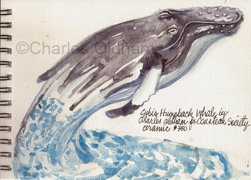 Charles Oldham sketch for Cybis humpback whale