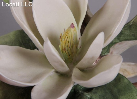 The Cybis FlowerStudies
