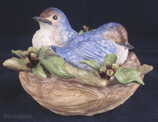 NESTLING BLUEBIRDS ON COCKSPUR HAWTHORN by Cybis