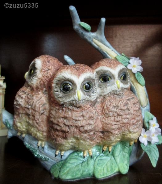 NESTLING OWLS HARRIET HAWK AND HOOD by Cybis