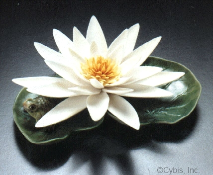 WATER LILY WITH FROG by Cybis