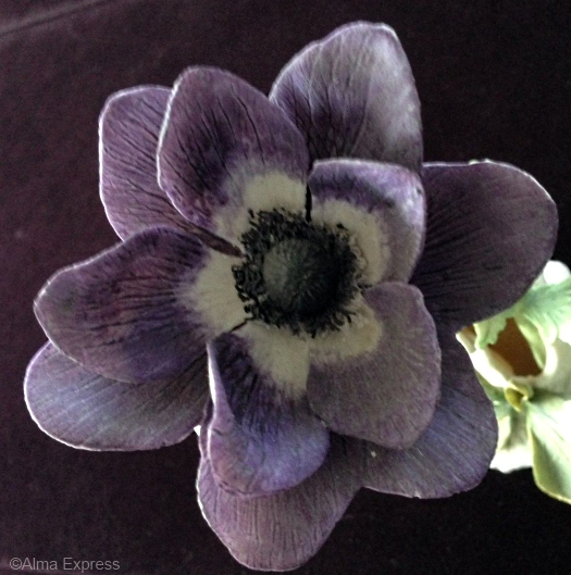 windflower-in-purple-detail