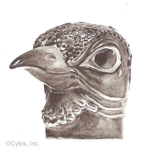 BBEAKED BIRD HEAD by Cybis